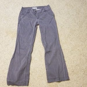 BKE casuals Serena Grey bootcut pant